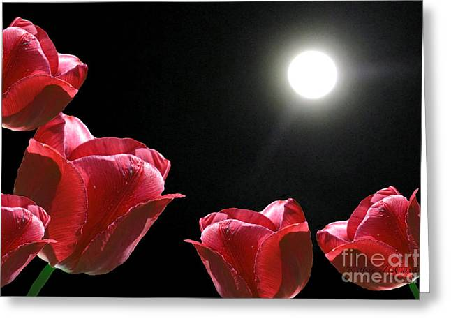 Ohio ist Digital Greeting Cards - Red Tulips in the Moonlight Greeting Card by Kathie McCurdy