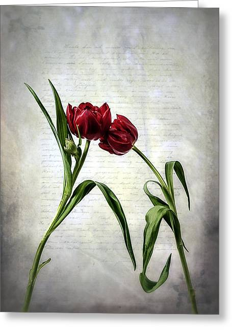 Vernal Greeting Cards - Red Tulips On A Letter Greeting Card by Joana Kruse