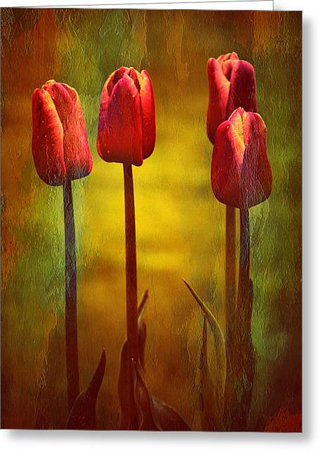 Photos With Red Greeting Cards - Red Tulips Standing Tall Greeting Card by Anne Macdonald