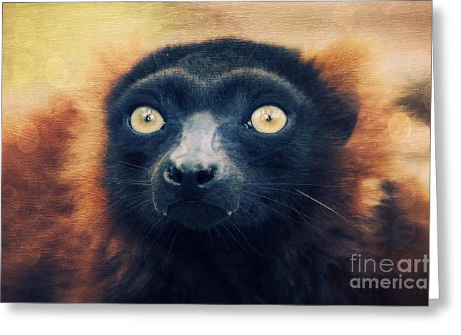 Black Fur Greeting Cards - Red Vari Greeting Card by Angela Doelling AD DESIGN Photo and PhotoArt