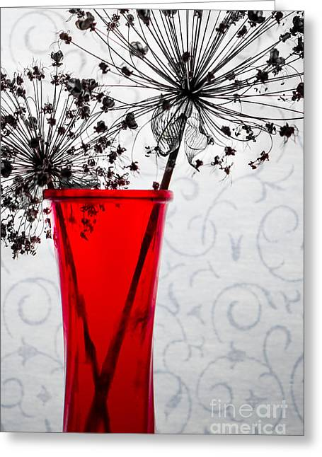 Red Vase With Dried Flowers Greeting Card by Michael Arend