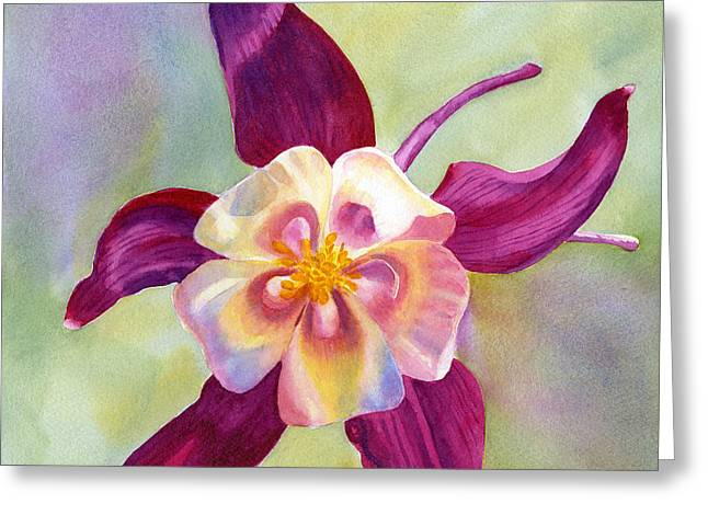 Columbine Greeting Cards - Red Violet Columbine with Background Greeting Card by Sharon Freeman