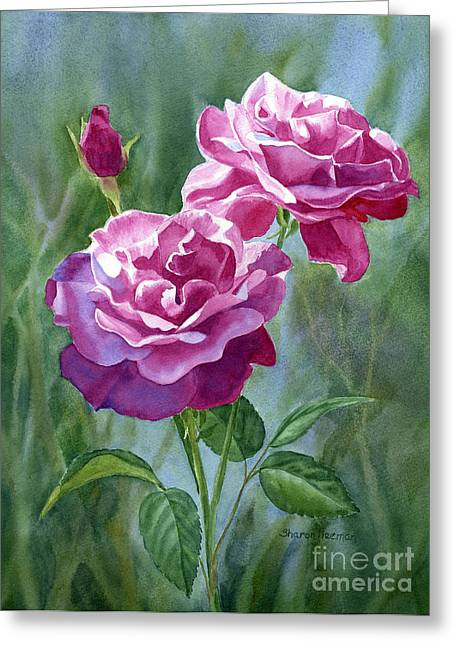 Violet Art Greeting Cards - Red Violet Roses with Background Greeting Card by Sharon Freeman