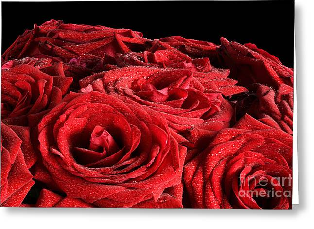 Bouquet Of Roses Greeting Cards - Red wet roses flowers isolated on black background Greeting Card by Michal Bednarek