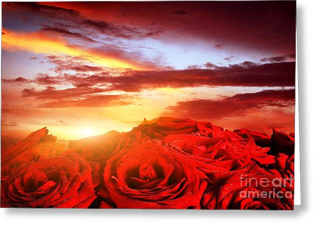 Wet Rose Greeting Cards - Red wet roses flowers on romantic sunset sky Greeting Card by Michal Bednarek