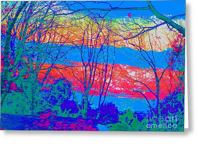 Setting Pastels Greeting Cards - Red White And Blue Greeting Card by Dan Hilsenrath