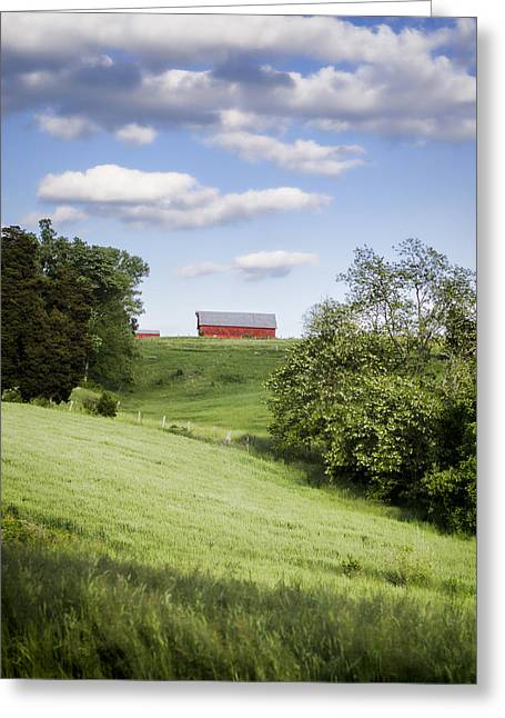 Tobacco Barns Greeting Cards - Red White and Blue Greeting Card by Heather Applegate