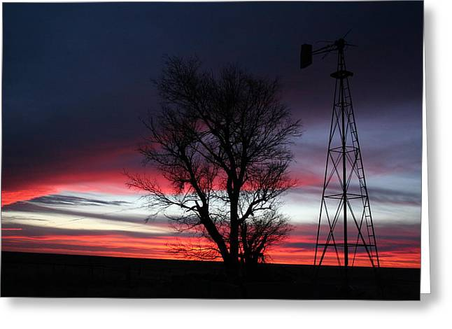 Western Pyrography Greeting Cards - Red White and Blue Sunrise Greeting Card by Cary Amos