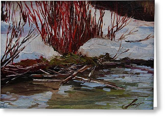 Suzanne Tynes Greeting Cards - Red Willows Greeting Card by Suzanne Tynes
