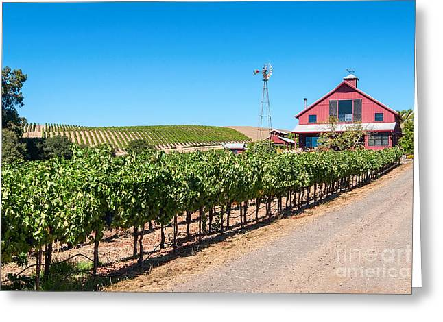 Viticulture Greeting Cards - Red Wine Barn - Beautiful view of wine vineyards and a Red Barn in Napa Valley California. Greeting Card by Jamie Pham