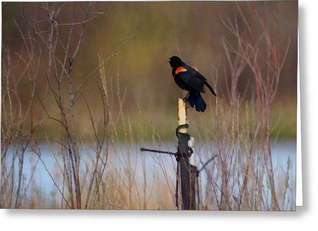 Red Winged Blackbird 2 Greeting Card by Ernie Echols