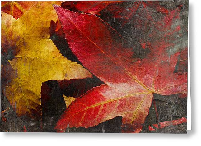 October Framed Greeting Cards - Red Yellow And Black Greeting Card by Heidi Smith