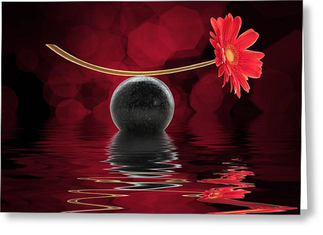Floral Still Life Greeting Cards - Red zen gerbera Greeting Card by Delphimages Photo Creations
