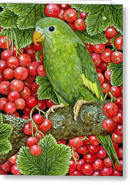 Cranberry Greeting Cards - Redcurrant Parakeet Greeting Card by Ditz