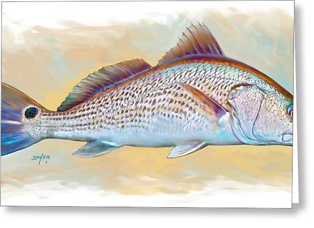 Fish Picture Greeting Cards - Redfish Illustration Greeting Card by Mike Savlen