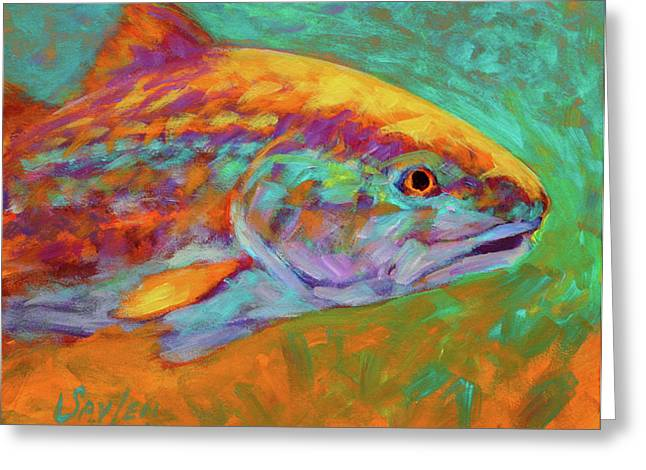 Marine Life Greeting Cards - RedFish Portrait Greeting Card by Mike Savlen
