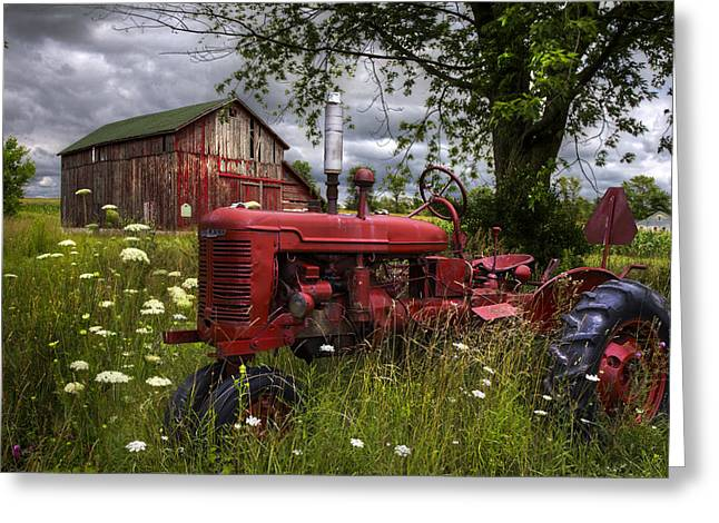 Reds In The Pasture Greeting Card by Debra and Dave Vanderlaan