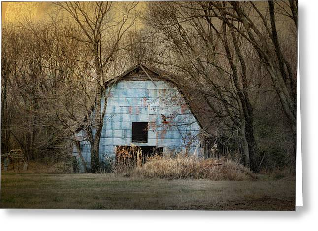 Tennessee Barn Greeting Cards - Redtail At The Blue Barn Greeting Card by Jai Johnson
