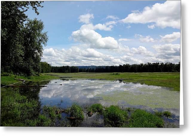 Bottomlands Greeting Cards - Redtail Lake at Steigerwald Natinal Wildlife Refuge Greeting Card by Lizbeth Bostrom