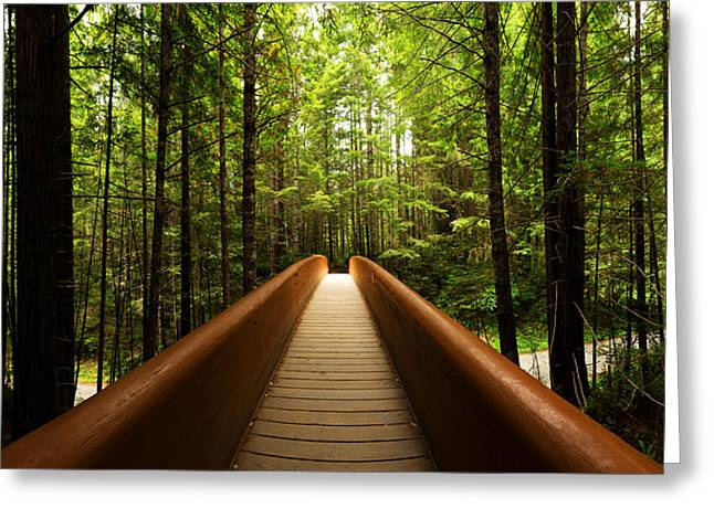 Redwood Bridge Greeting Card by Chad Dutson