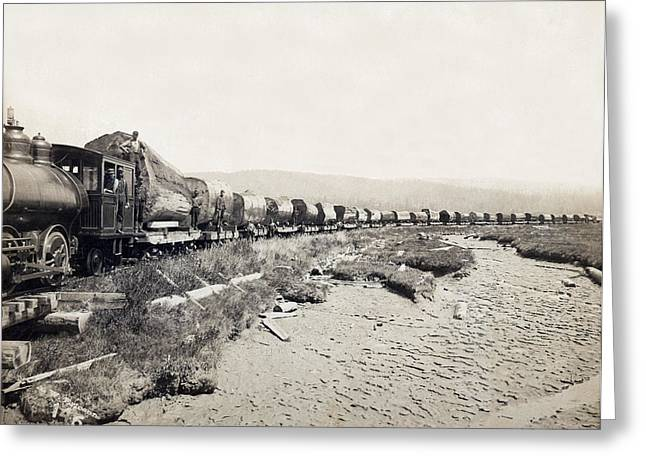 Redwood Loging Train Greeting Card by Underwood Archives