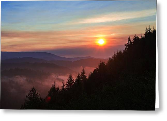 Highway Lights Greeting Cards - Redwood Sun Greeting Card by Chad Dutson