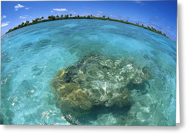 Photos Of Coral Greeting Cards - Reef Seascape Palmyra Atoll Greeting Card by Tui De Roy