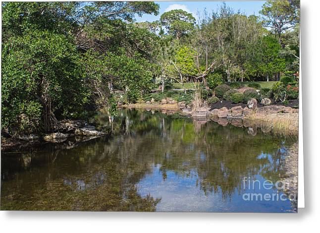 Trees Reflecting In Water Greeting Cards - Reflect Greeting Card by Arlene Carmel