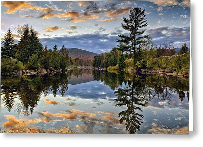 Beautiful Creek Greeting Cards - Reflect Greeting Card by Mark Papke
