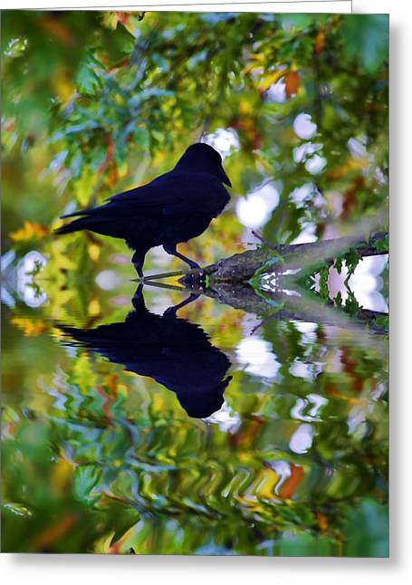 Reflecting Water Greeting Cards - Reflected crow Greeting Card by Sharon Lisa Clarke