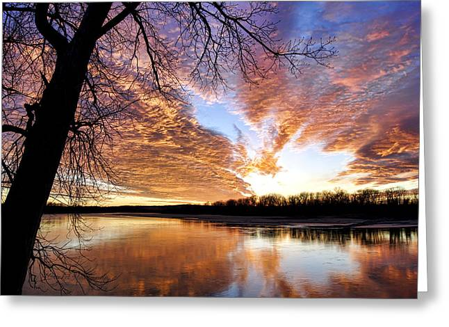 Hartsburg Greeting Cards - Reflected Glory Greeting Card by Cricket Hackmann