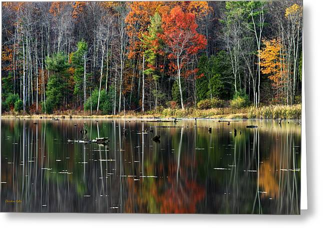 Fall Colors Greeting Cards - Reflecting Autumn Greeting Card by Christina Rollo