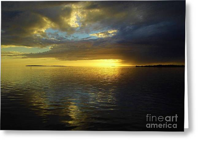 Reflecting Beauty At Sunset Greeting Card by D Hackett