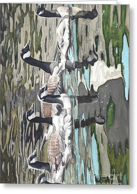 Reflecting Geese Greeting Card by Tina  Sander