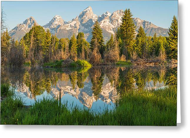Reflecting On Everything Greeting Card by Kristopher Schoenleber