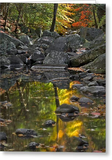Pictorial Landscape Greeting Cards - Reflecting On Fall Greeting Card by Susan Candelario