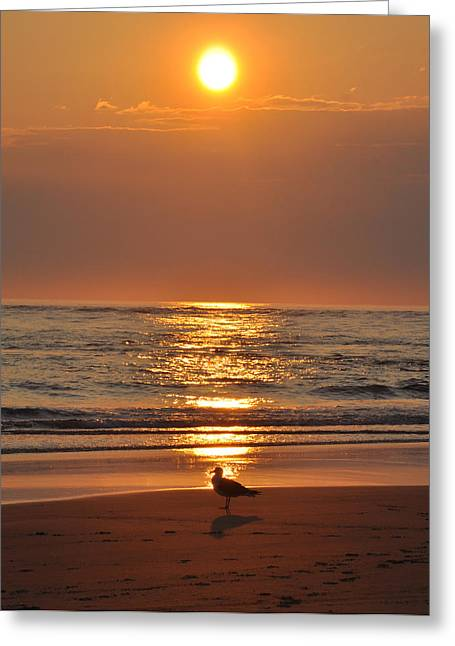 Virginia Beach Greeting Cards - Reflecting on the New Day Greeting Card by Bill Cannon