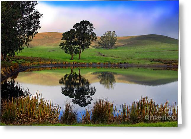 Bucolic Scenes Digital Art Greeting Cards - Reflecting Pond in bucolic stillness amongst the hills Greeting Card by Wernher Krutein