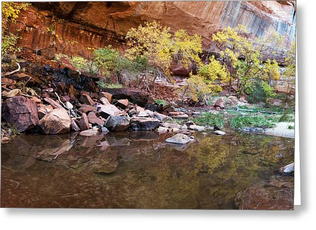 Pond Photography Greeting Cards - Reflecting Pond In Zion National Park Greeting Card by Panoramic Images