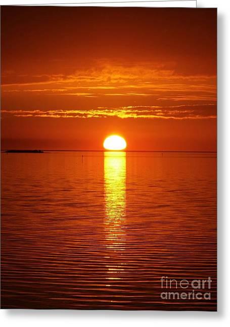 Cedar Key Greeting Cards - Reflecting Sunset Greeting Card by D Hackett