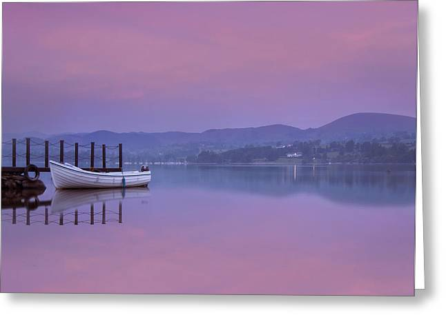 Pink Black Tree Rainbow Photographs Greeting Cards - Reflecting the Morning Stillness Greeting Card by Adrian Campfield
