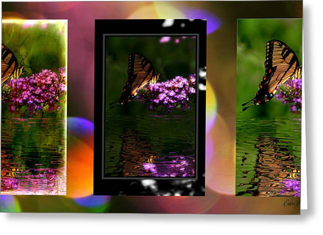 Tiger Swallowtail Digital Art Greeting Cards - Reflection Above The Pond Greeting Card by EricaMaxine  Price