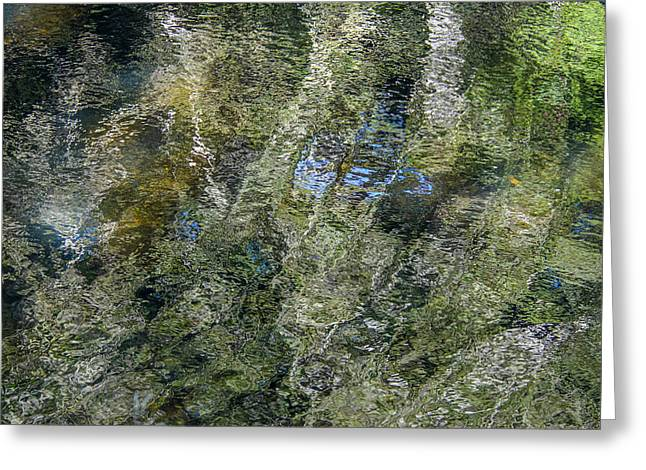 Trees Reflecting In Creek Greeting Cards - Reflection Art Greeting Card by Roxy Hurtubise