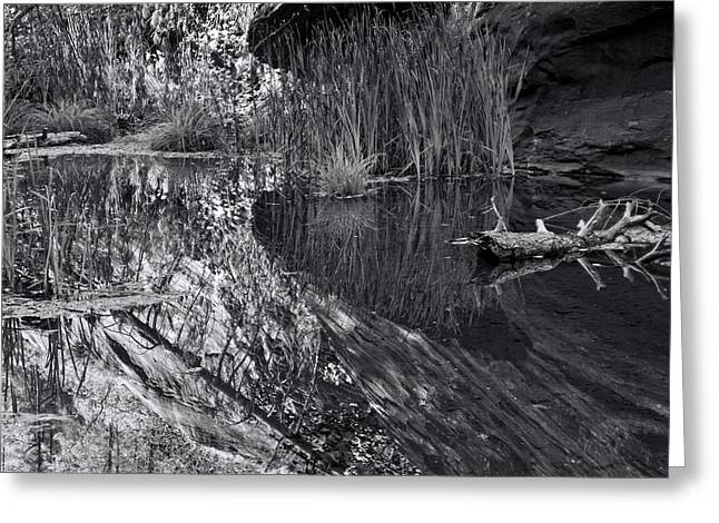 West Fork Greeting Cards - Reflection in the Water B.W. Greeting Card by Brian Lambert