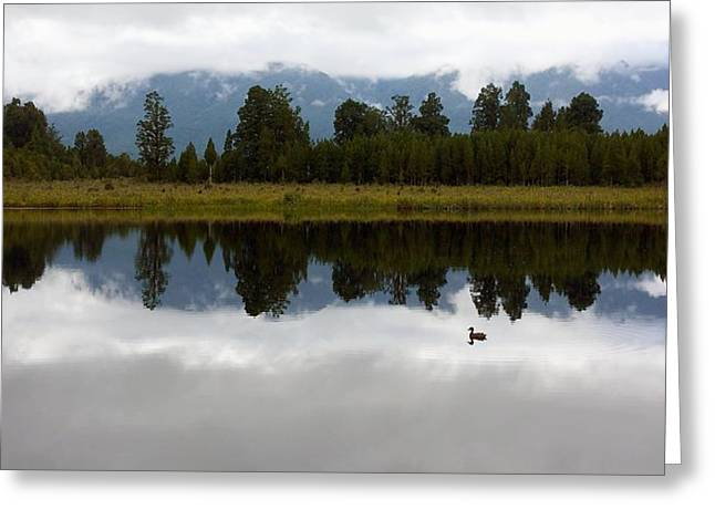 Water Fowl Greeting Cards - Reflection Lake Greeting Card by Stuart Litoff