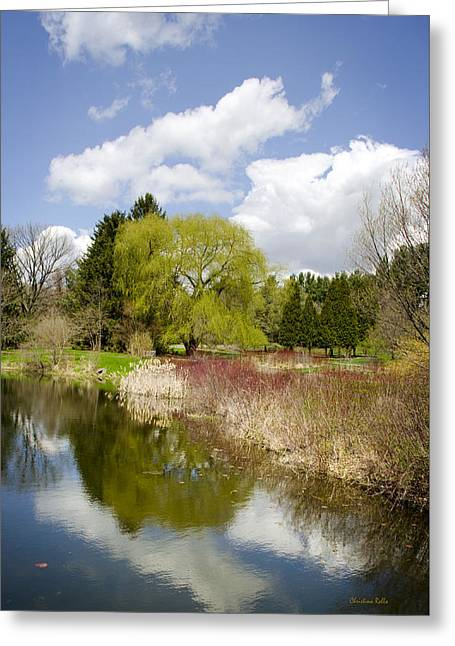 Reflection Landscape Greeting Card by Christina Rollo