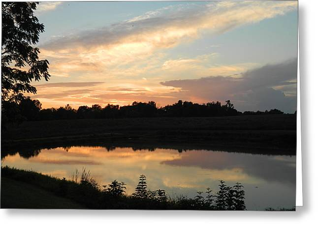 Reflection Greeting Card by Linda Brown