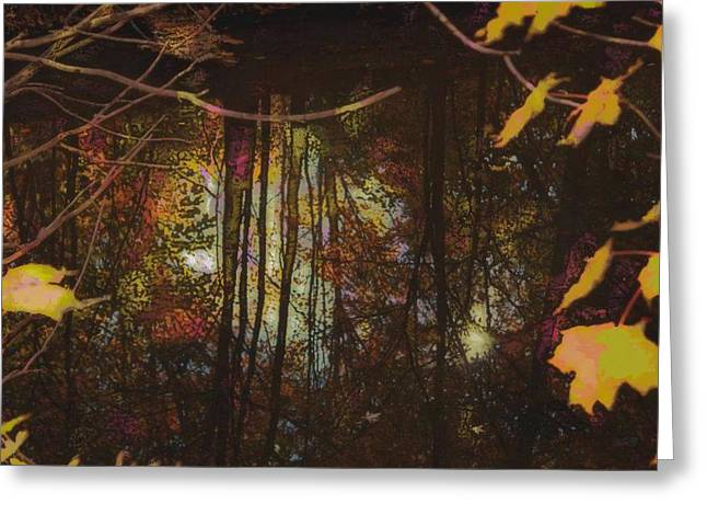 Fall Photos Paintings Greeting Cards - Reflection Greeting Card by Michael James Greene