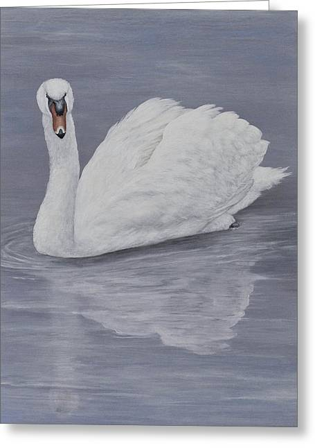 Swans... Greeting Cards - Reflection Greeting Card by Nancy Lauby