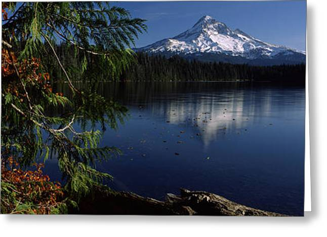 Mt Hood Greeting Cards - Reflection Of A Mountain In A Lake, Mt Greeting Card by Panoramic Images